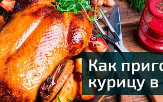 Как приготовить мясо курицы в духовке
