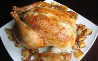 Блюда из птицы в мультиварке