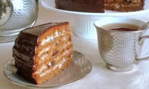 Полезные советы и рецепты с фото для приготовления медового торта в мультиварке Редмонд и Поларис