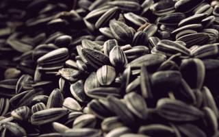 Как вкусно пожарить семечки с солью