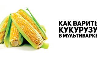 Кукуруза в мультиварке Редмонд