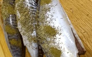 Рецепты блюд из скумбрии в мультиварке