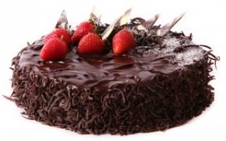 Рецепты с фото домашней выпечки: как приготовить шоколадный торт в мультиварке Редмонд и Поларис