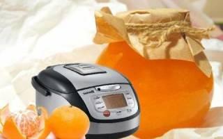 Рецепты блюд из мандаринов в мультиварке